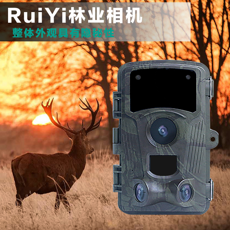 <b>林业相机</b>