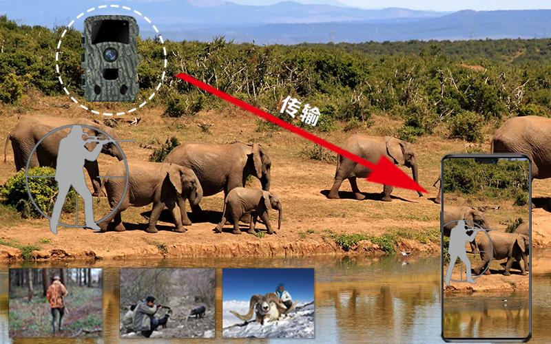 自然保护区监控